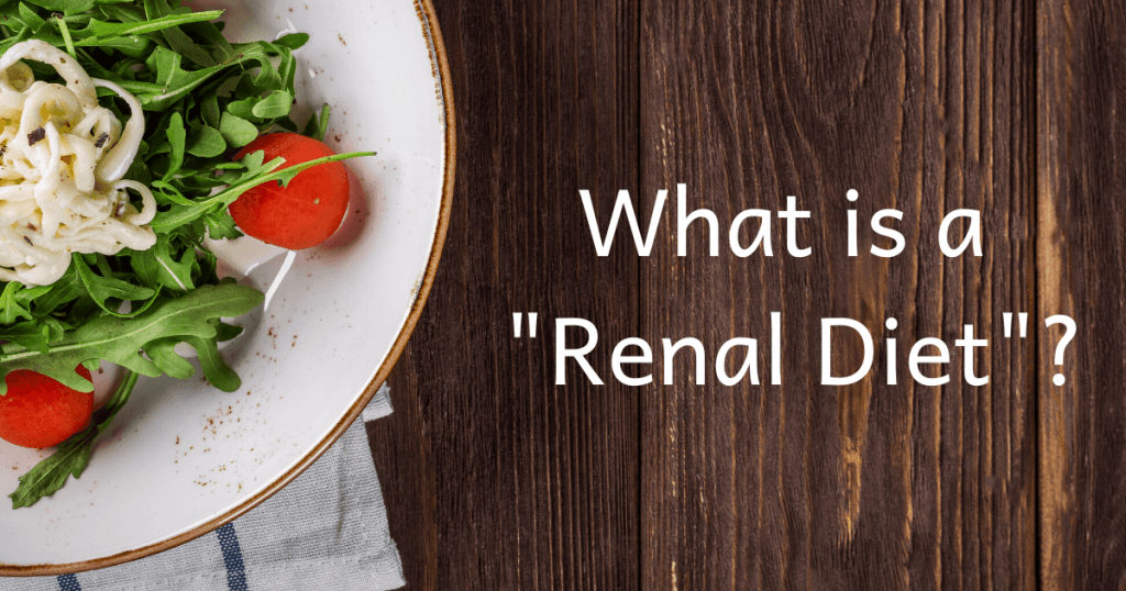 what is a renal diet?
