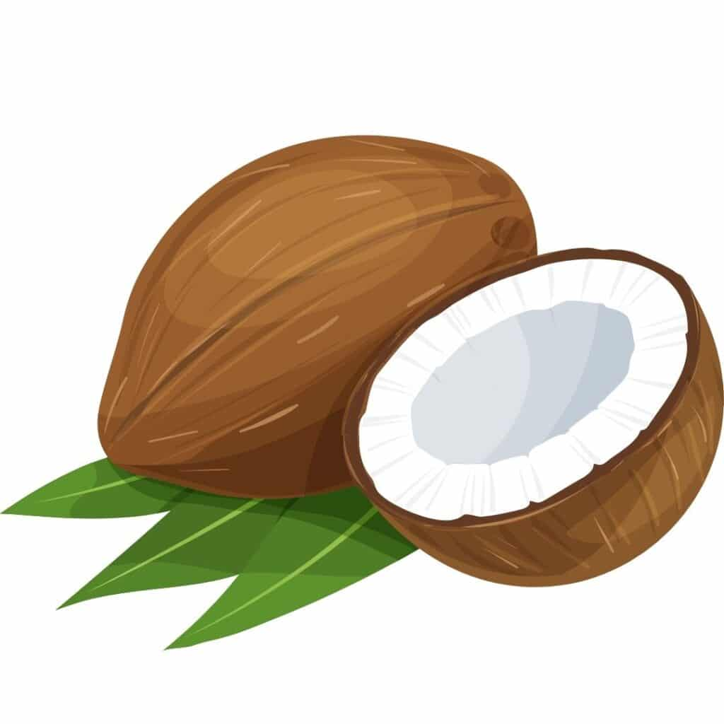 picture of halved coconut, a low oxalate nut