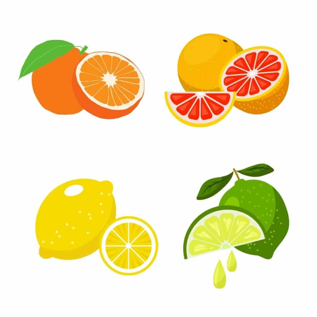 Picture of oranges, grapefruit, lemon and limes. Citrus fruits can help prevent kidney stones after gastric bypass surgery.