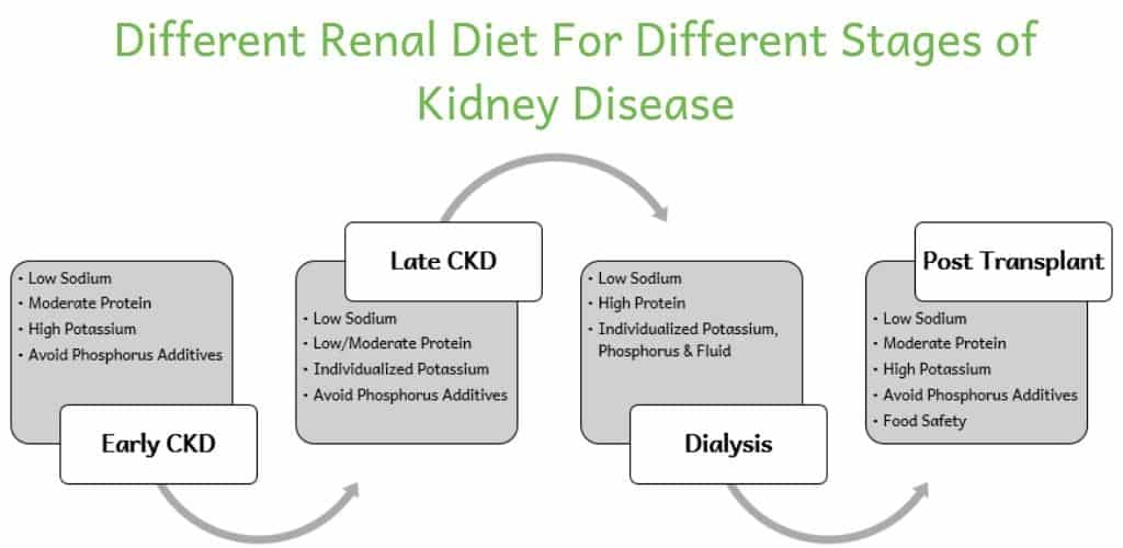 Flow chart showing how a renal diet changes as kidney disease progresses. In early CKD, focus on low sodium, moderate protein, high potassium and avoid phosphorus additives. In late CKD, focus on low sodium, low/moderate protein, individualized potassium and avoid phosphorus additives. On dialysis, focus on low sodium, high protein and individualized potassium, phosphorus and fluid. After transplant, focus on low sodium, moderate protein, high potassium, avoid phosphorus additives and food safety.